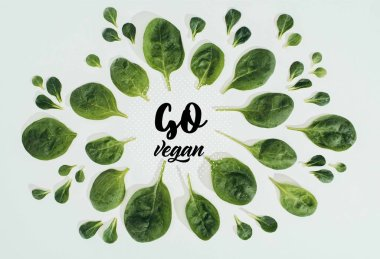 top view of beautiful fresh green leaves and words go vegan isolated on grey