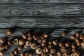 Ansicht von Champignon-Pilzen auf grauer Holzoberfläche