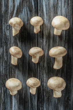 top view of champignon mushrooms in rows on wooden surface
