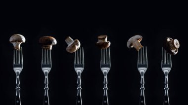 row of champignon mushrooms on forks isolated on black