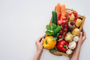cropped shot of person holding box with fresh ripe organic vegetables isolated on white