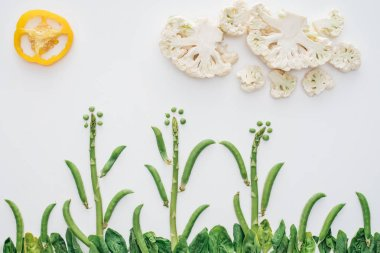 top view of beautiful landscape made of green peas, sliced pepper and cauliflower isolated on white
