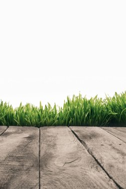 Full frame of wooden planks and green grass isolated on white stock vector