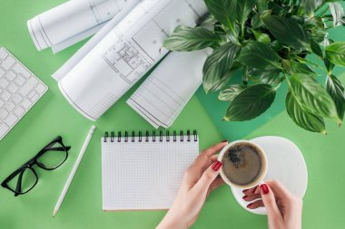 cropped image of female architect holding cup of coffee at table with textbook, blueprints and plant