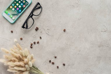 Top view of smartphone with ios homescreen with eyeglasses, spilled coffee beans and lagurus ovatus bouquet on concrete surface stock vector