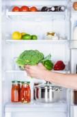 Fotografie ořízne obraz člověka, přičemž brokolice z ledničky