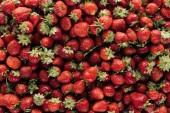Fotografie plnoformátový záběr zralé jahody na pozadí