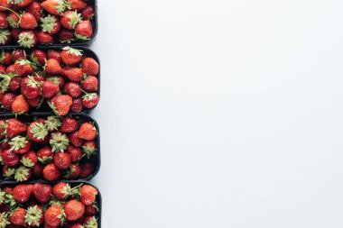 top view of row of containers with ripe strawberries on white tabletop with blank copy space