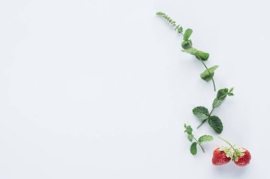 top view of strawberries and mint branches on white surface