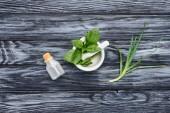 Fotografia elevato vista della bottiglia di olio essenziale a base di erbe naturale, pestello con mortaio e aloe vera su superficie grigia