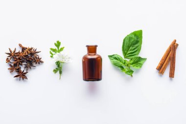 elevated view of bottle of aromatic essential oil, cinnamon sticks, carnation and green leaves isolated on white