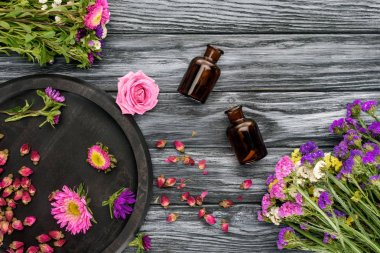 top view of bottles of natural herbal essential oils and pink with violet flowers on wooden surface