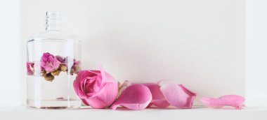 bottle of natural herbal essential oil with pink roses on white surface