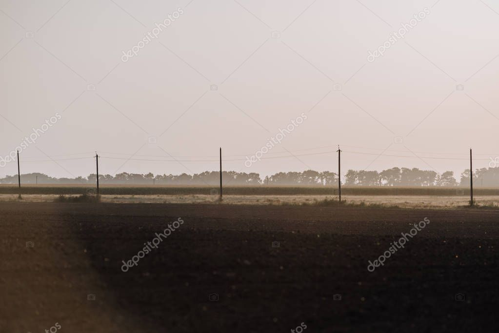rural scene with field and electric towers in countryside
