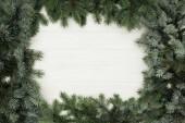 Fotografia vista superiore di ramoscelli di abete sempreverde bella sul fondo di legno bianco