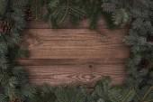 krásné stálezelených jehličnatých větví a šišky na dřevěné pozadí