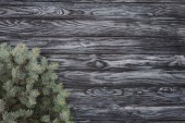 pohled shora krásné jedle stálezelených větviček na dřevěné pozadí