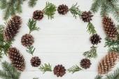 Fotografia belle ramoscelli di conifere sempreverdi e pigne su fondo di legno bianco