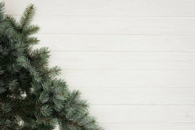 top view of beautiful green fir twigs on white wooden background