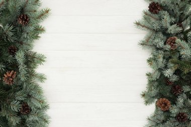 top view of beautiful evergreen fir twigs with pine cones on white wooden background