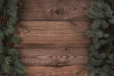 top view of evergreen coniferous branches with pine cones on wooden background