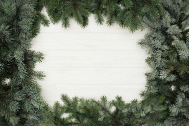 top view of beautiful evergreen fir twigs on white wooden background