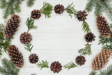 beautiful evergreen coniferous twigs and pine cones on white wooden background