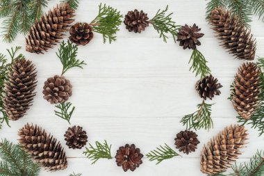 Top view of evergreen coniferous twigs and pine cones on white wooden background stock vector