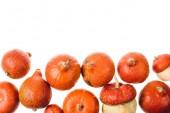podzimní zralé oranžové dýně izolované na bílém