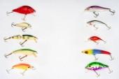 Fotografie pohled z různých rybí návnady umístěné ve dvou řadách izolovaných na bílém pozadí