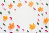 flache Lage farbiger Blätter mit leerem Kreis innen isoliert auf weißem, herbstlichem Hintergrund