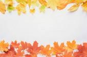 felülnézet elszigetelt fehér, őszi háttér, a sárga és narancssárga juharlevél