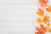 pohled shora na podzimní javorové listy na jedné straně dřevěný povrch