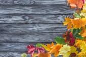 felülnézet, őszi levelek, a szürke fa felülettel