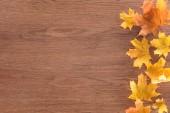 Fotografie pohled shora žluté podzimní javorové listy na hnědý dřevěný povrch