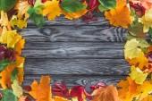 Ansicht des Rahmens herbstlicher Ahornblätter auf hölzerner grauer Oberfläche