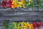 pohled shora z Burgundska, žluté a zelené podzimní javorové listy na dřevěný povrch