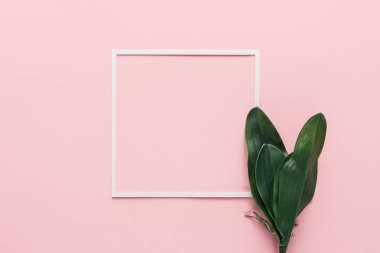 Elevated view of white frame and green tropical leaves on pink, minimalistic concept stock vector