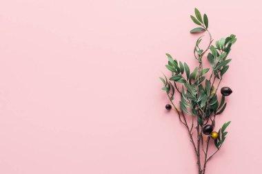 """Картина, постер, плакат, фотообои """"вид сверху ветки с зелеными листьями и украшенными ягодами на розовом печать картины"""", артикул 221983976"""