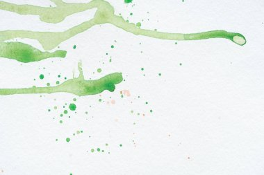Abstract green watercolor stains and splatters on white paper stock vector