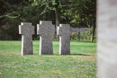 Old identical tombstones placed in row on grass at cemetery stock vector