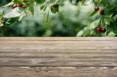 Šablona hnědé dřevěné podlahy třešeň na rozmazané pozadí zelené