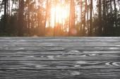 Šablona šedé dřevěné podlahy s borového lesa na pozadí