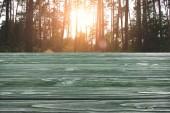 Vorlage von dunkelgrünem Holzboden mit Kiefernwald auf Hintergrund