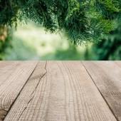 Fotografie povrch béžové dřevěných prken s oříznutou borovice listy na pozadí