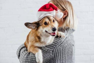 girl in grey sweater holding cute pembroke welsh corgi dog in santa hat on white