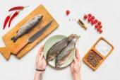 Fotografie oříznutý obraz ženy, přičemž talíř syrových ryb z tabulky s přísadami