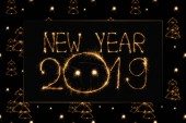 2019 new year light lettering and fir tree light signs on black background
