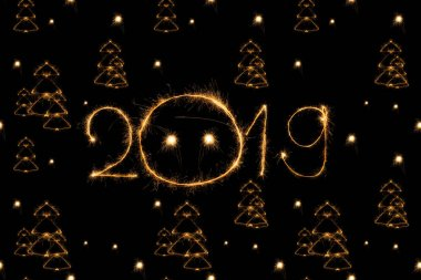 2019 and fir tree light sings on black background