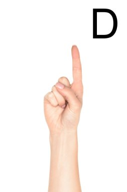 Cropped view of female hand showing latin letter - D, sign language, isolated on white stock vector